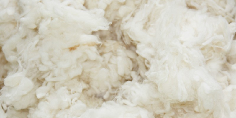 For better sleep: wool instead of down feather